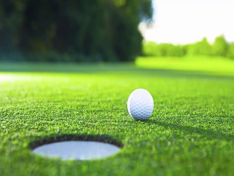 Golf là môn thể thao dùng gậy để đánh bóng vào được những lỗ nhỏ trên sân